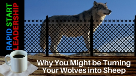 Are You Turning Your Wolves into Sheep
