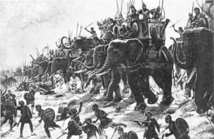 Don't Fear Elephants